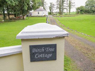 Birch Tree Cottage - 1015039 - photo 4