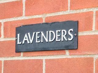 Lavenders - 1016772 - photo 3