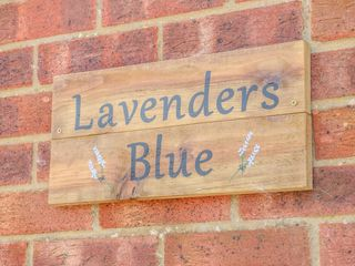 Lavender's Blue - 1017489 - photo 2
