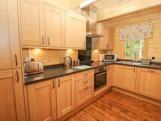 Bryn Derwen Lodge - 1020489 - photo 8