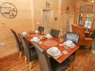 Bryn Derwen Lodge - 1020489 - photo 7