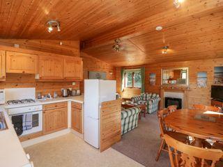 16 Amber Wood Lodge - 1021624 - photo 7