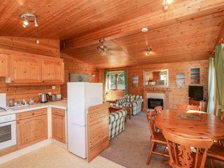 16 Amber Wood Lodge - 1021624 - photo 9