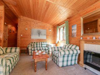 16 Amber Wood Lodge - 1021624 - photo 4
