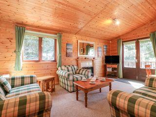 16 Amber Wood Lodge - 1021624 - photo 5