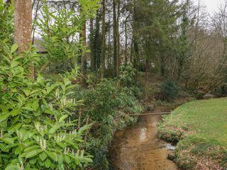 Crocus Lodge - 1022321 - photo 18