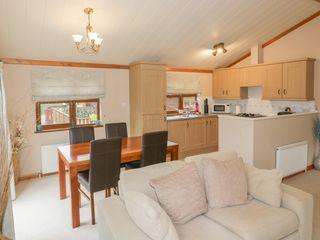 Crocus Lodge - 1022321 - photo 8