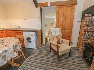 Bryn Hafod Cottage - 1025961 - photo 5