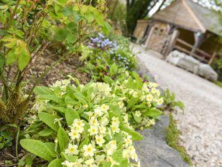 Mimi's Cottage - 1027416 - photo 10
