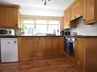 Bryn Ingli Apartment - 1035729 - photo 6