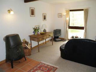 Sycamore Apartment - 1036043 - photo 3