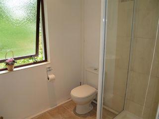 Sycamore Apartment - 1036043 - photo 9