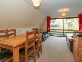Lochside Lodge No 25 - 1036782 - photo 6