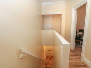 North Shore Apartment - 1037532 - photo 8