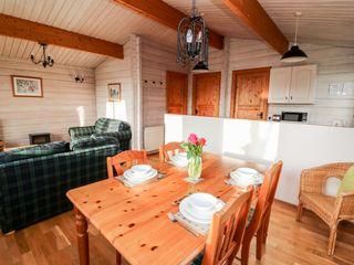 Snowy Owl Lodge - 1038275 - photo 5
