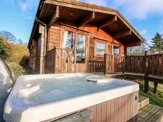 Snowy Owl Lodge - 1038275 - photo 2