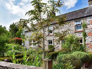 Yew Tree photo 1