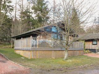 Dove Lodge - 1046585 - photo 23