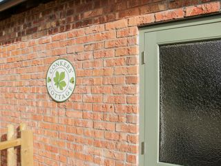 Conkers' Cottage - 1051049 - photo 4
