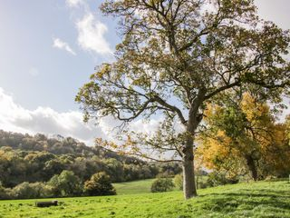 Conkers' Cottage - 1051049 - photo 26