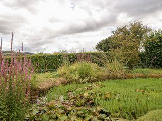 Yeoman Cottage - 1053084 - photo 27