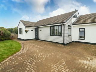 Bwthyn Eirlys (Snowdrop Cottage) photo 1