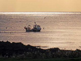 23 Laigh Isle - 11400 - photo 9