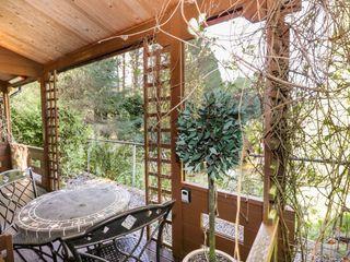 The Log Cabin - 12682 - photo 10
