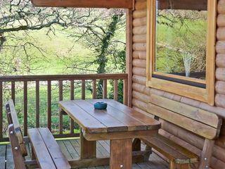 Dartmoor Edge Lodge - 13133 - photo 9