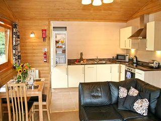 Dartmoor Edge Lodge - 13133 - photo 3