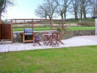 Treffgarne Farm Cottage - 13363 - photo 9