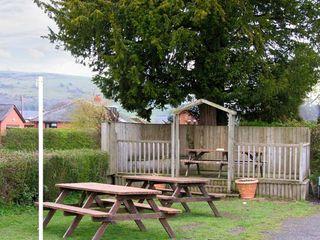 Yew Tree Cottage - 13771 - photo 10