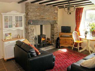 Bwthyn Afon (River Cottage) - 15038 - photo 3