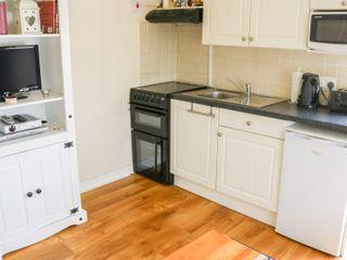 Fuchsia Apartment - 15162 - photo 4