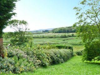 Chartfield - 15493 - photo 20