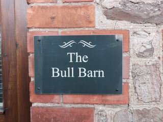 The Bull Barn - 15914 - photo 4