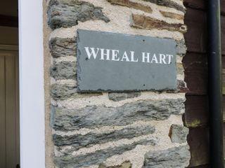 Wheal Hart - 2142 - photo 2