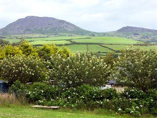 Lon Goch Cottage - 2185 - photo 7