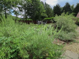 The Campbell Cottage - 24486 - photo 29