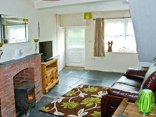 Ty Bach Cottage - 25417 - photo 4