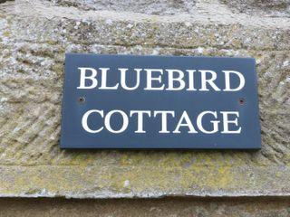 Bluebird Cottage - 3517 - photo 3