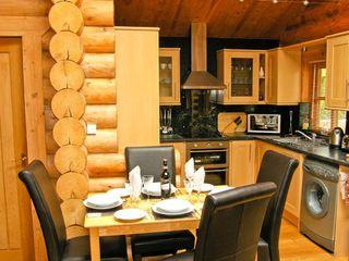 Cedar Log Cabin, Brynallt Country Park - 3623 - photo 4