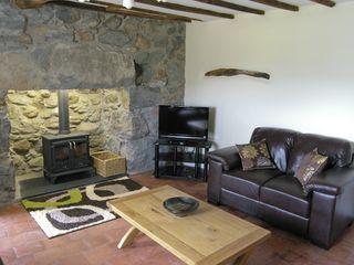 Ty Mawr Cottage - 4123 - photo 4