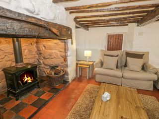 Hen Argoed Cottage - 4131 - photo 4
