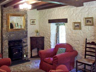 Nant Cottage - 645 - photo 4