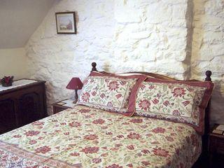Nant Cottage - 645 - photo 8