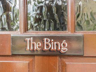 The Bing - 906209 - photo 3