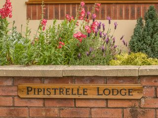 Pipistrelle Lodge - 912196 - photo 3