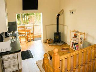 Gwynfryn Cottage - 912385 - photo 3