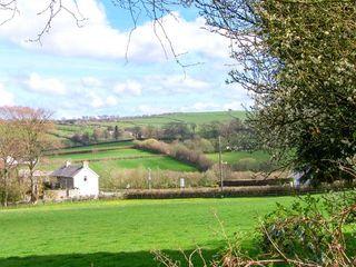 Gwynfryn Cottage - 912385 - photo 9